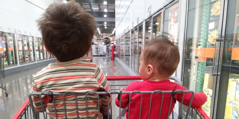Two toddler brothers sitting in a shopping cart